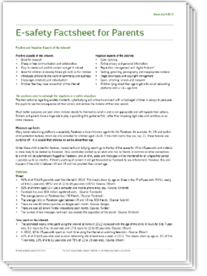 Ess esafety factsheet 2013