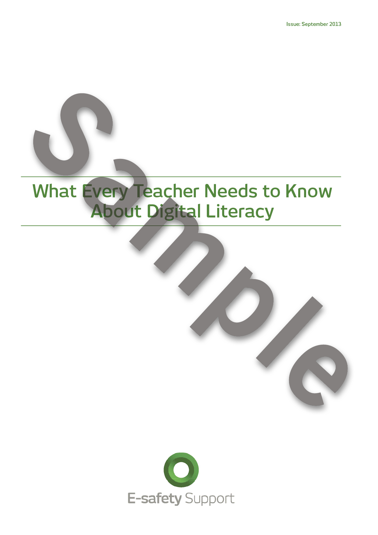 Essay about media literacy